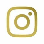 Logo de instagram para expertos